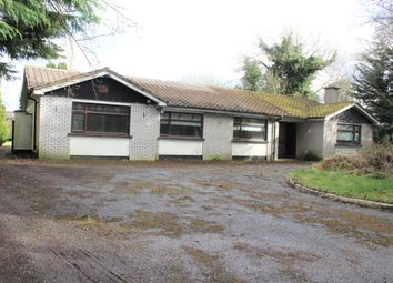 Thumbnail 5 bed bungalow for sale in Daars South, Sallins, Kildare