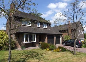 Thumbnail 4 bed detached house to rent in The Boundary, Langton Green, Tunbridge Wells