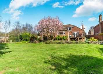 Thumbnail 4 bed detached house for sale in Old Drive, Loose, Maidstone, Kent