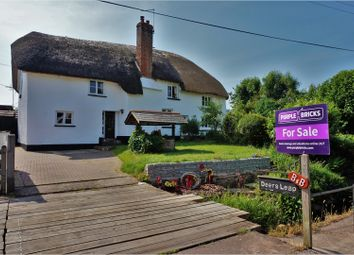 Thumbnail 4 bed cottage for sale in West Town, Exeter
