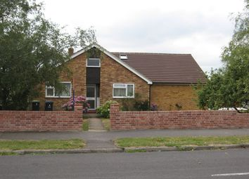 Thumbnail 5 bed detached bungalow to rent in Furze Way, Waterlooville