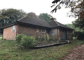 Thumbnail 3 bed bungalow to rent in Coombe Place, Offham, Lewes