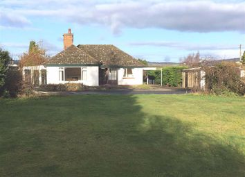 Thumbnail 3 bed detached bungalow to rent in Brecon Road, Hay-On-Wye, Hay-On-Wye, Herefordshire