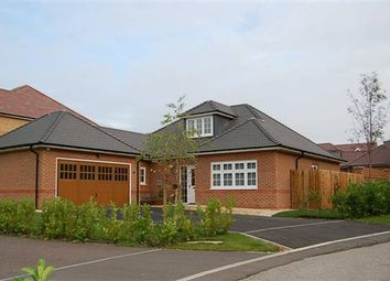 Thumbnail 3 bed bungalow for sale in Dewlay Court, Preston