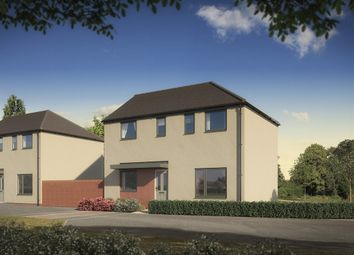 "Thumbnail 3 bed detached house for sale in ""The Clayton"" at St. Catherine Road, Basingstoke"