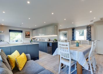 Thumbnail 4 bedroom detached house for sale in Brackenbury Close, Ipswich