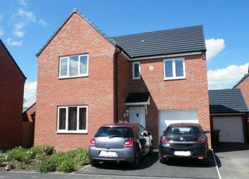Thumbnail 4 bed detached house to rent in Pandora Drive, Stanground, Peterborough