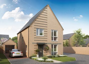 "Thumbnail 4 bedroom detached house for sale in ""Ingleby"" at Pedersen Way, Northstowe, Cambridge"
