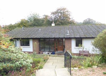 Thumbnail 4 bed detached house for sale in Mavis Haugh, St Andrews, Fife