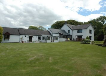 Thumbnail 6 bed detached house for sale in Blaenffos, Boncath, Pembrokeshire