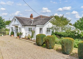 Thumbnail 5 bed detached bungalow for sale in Ford End, Chelmsford, Essex