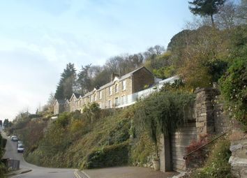 Thumbnail 3 bed cottage to rent in Park Terrace, Malpas, Truro