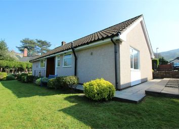 Thumbnail 3 bed detached bungalow for sale in Orchard Close, Gilwern, Abergavenny