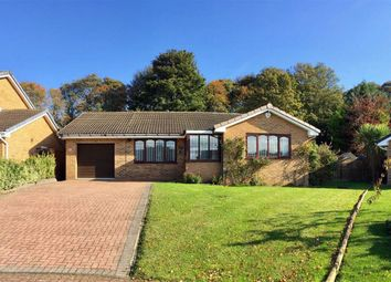 Thumbnail 3 bed detached bungalow for sale in Brandling Court, South Shields