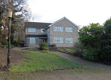 Thumbnail 4 bed semi-detached house to rent in Winchester Road, Bishops Waltham, Southampton