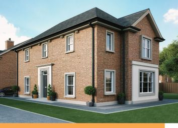 Thumbnail 3 bed detached house for sale in Gransha Hill, Gransha Road, Dundonald, Belfast