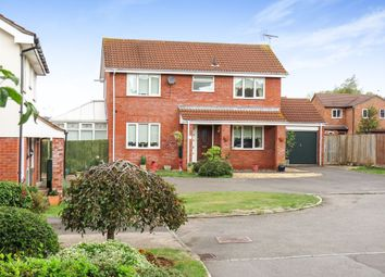 Thumbnail 4 bedroom detached house for sale in Sundew Close, Taunton