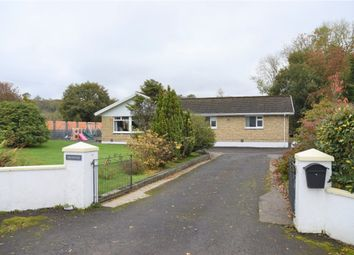 Thumbnail 4 bed detached bungalow for sale in Cwm Cou, Newcastle Emlyn