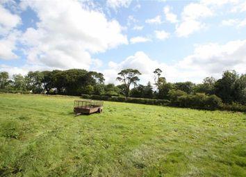 Thumbnail Land for sale in Grove Road, Ballynahinch, Down
