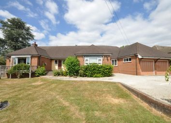 Thumbnail 4 bed detached bungalow for sale in South View Road, Ashtead