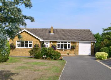 Thumbnail 4 bed detached bungalow for sale in Horestone Rise, Seaview, Isle Of Wight