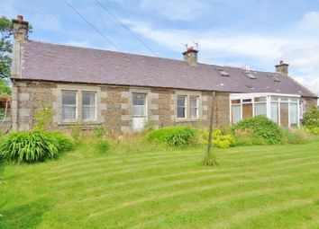 Thumbnail 5 bed cottage for sale in Leven