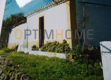 Thumbnail Land for sale in Almoster, 2005, Portugal