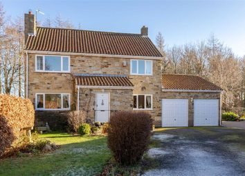 Thumbnail 4 bed detached house for sale in Beechside, Staindrop, Durham