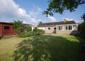 Thumbnail 3 bed detached bungalow to rent in Audley Croft, Ledbury, Herefordshire