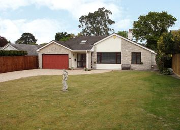Thumbnail 3 bedroom bungalow for sale in Malmesbury Road, St Leonards, Ringwood