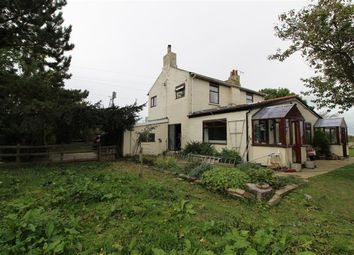 Thumbnail 3 bed semi-detached house to rent in Birkby, Northallerton