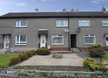 Thumbnail 2 bed terraced house for sale in Carse Terrace, Alloa