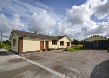 Thumbnail Property for sale in Fermor Road, Tarleton