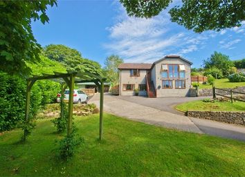 Thumbnail 4 bed detached house for sale in Stoke St Michael, Somerset, UK