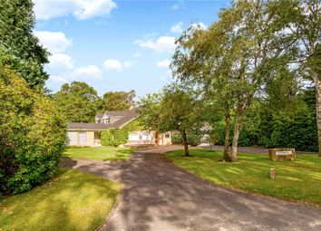 Thumbnail 5 bedroom detached house for sale in Cranley Road, Burwood Park, Walton-On-Thames, Surrey
