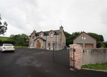Thumbnail 4 bed detached house to rent in Crossgar Road, Ballynahinch, Down