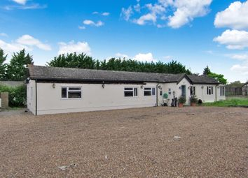 Thumbnail 5 bedroom detached bungalow for sale in Church Road, Noak Hill, Romford