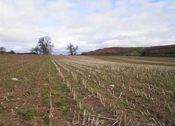 Thumbnail Land for sale in Llwyn Road, Oswestry