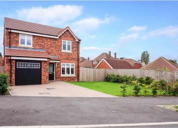 Thumbnail 4 bed detached house for sale in Nightingale Grove, Alfreton