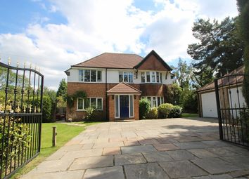 Thumbnail 4 bed detached house to rent in Pine Grove, Felbridge, East Grinstead