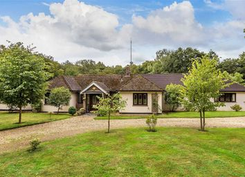Thumbnail 5 bedroom bungalow to rent in Carlton Road, South Godstone, Surrey