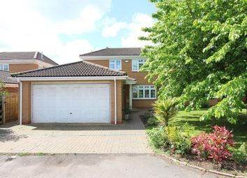 Thumbnail 4 bed detached house for sale in Lavender Close, Rugby
