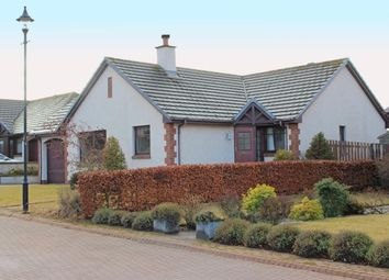 Thumbnail 3 bedroom bungalow to rent in Sutors View, Nairn
