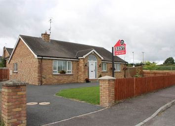 Thumbnail 4 bed bungalow for sale in Carquillan, Hilltown, Newry