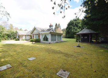 Thumbnail 5 bed detached house to rent in Island Bank Road, Inverness