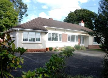 Thumbnail 3 bed detached bungalow to rent in Higher Metcombe, Ottery St. Mary