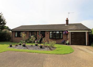 Thumbnail 4 bed detached bungalow for sale in Great Steeping, Spilsby