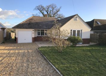 Thumbnail 3 bed bungalow to rent in Broomhill, Wimborne, Dorset