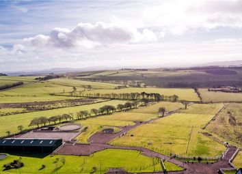 Thumbnail Commercial property for sale in Smiddy Stables, Carluke, South Lanarkshire