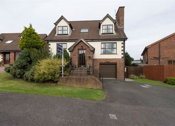 Thumbnail 5 bed detached house for sale in Carsons Road, Ballygowan, Newtownards, County Down
